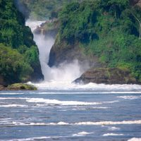 The unknown about Murchison Falls National Park