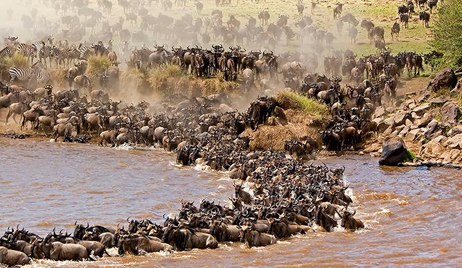 9 Day Great Migration Serengeti Tanzania