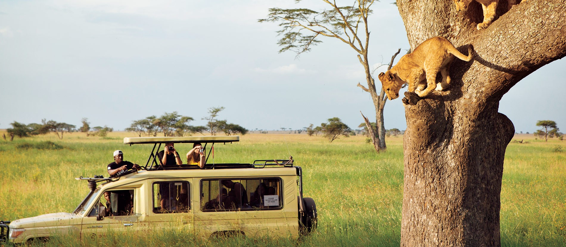 5 Day Tanzania Experience Safari Tour